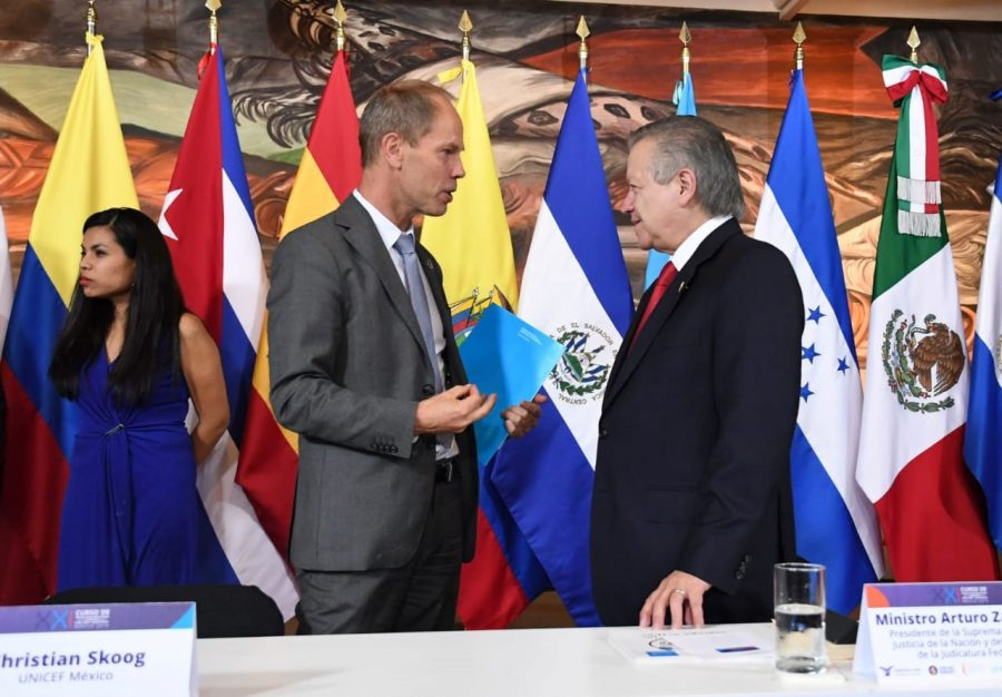 Curso Protección Jurisdiccional de los derechos de la niña, niño y adolescente México 2019-1